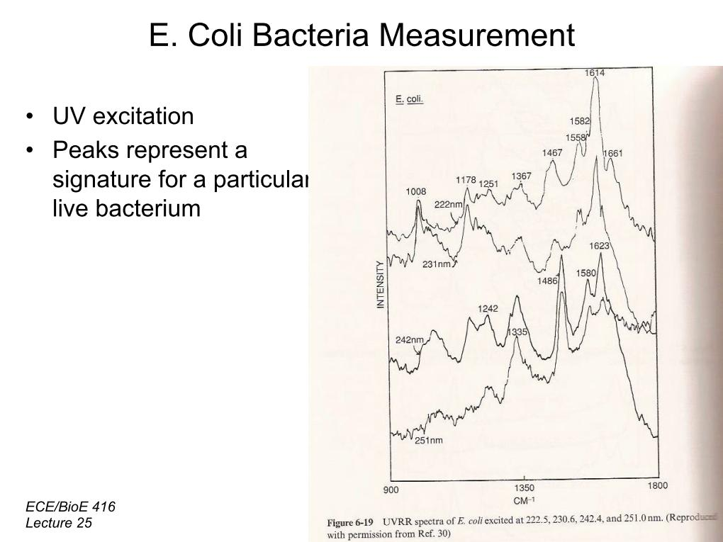 E. Coli Bacteria Measurement