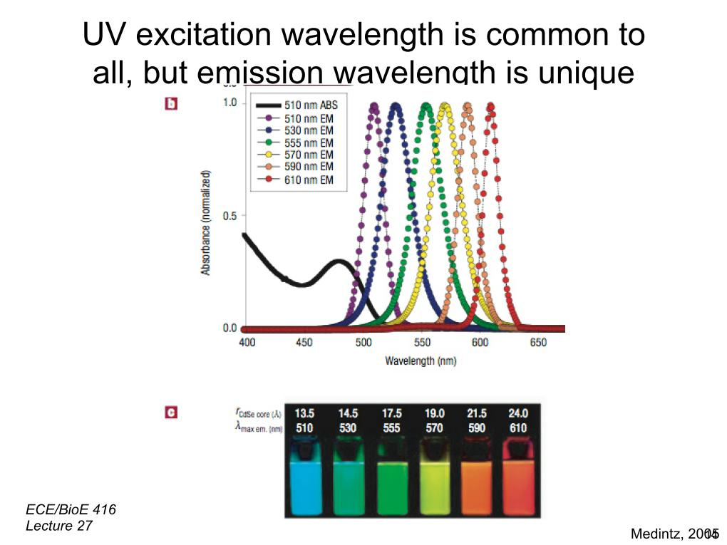 UV excitation wavelength