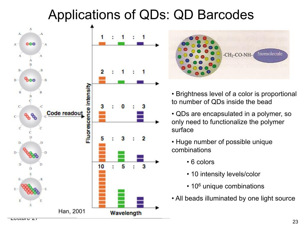 Applications of QDs: QD Barcodes