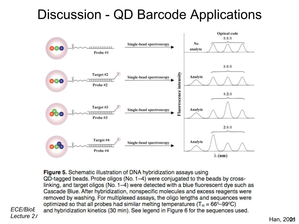 Discussion - QD Barcode Applications