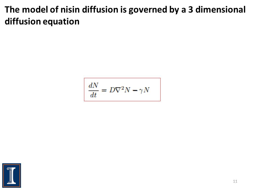 The model of nisin diffusion is governed by a 3 dimensional diffusion equation