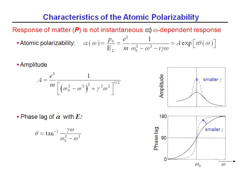 Characteristics of the Atomic Polarizability