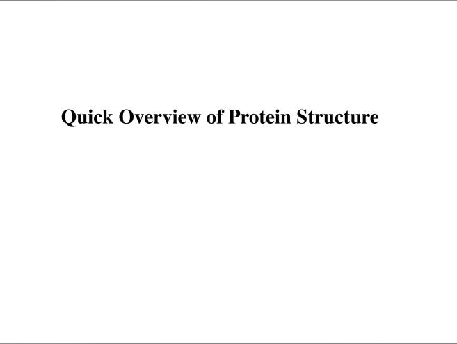 Quick Overview of Protein Structure