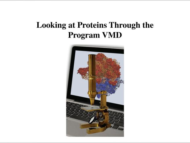 Looking at Proteins Through the Program VMD