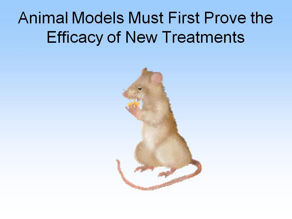 Animal Models Must First Prove the Efficacy of New Treatments