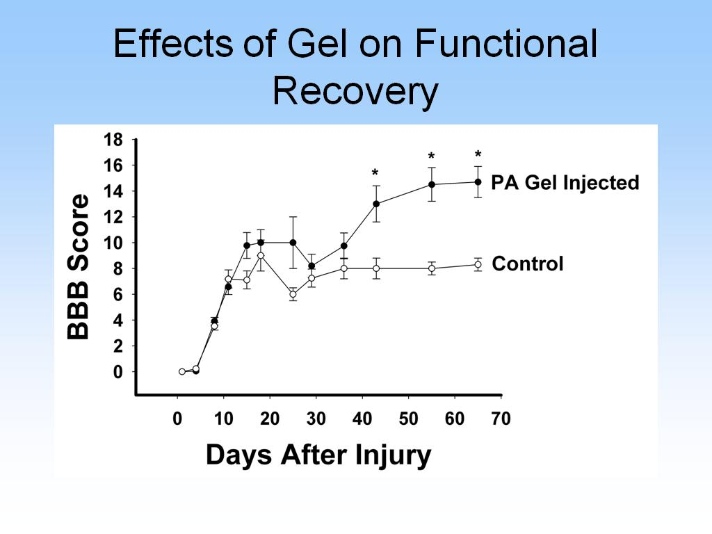 Effects of Gel on Functional Recovery