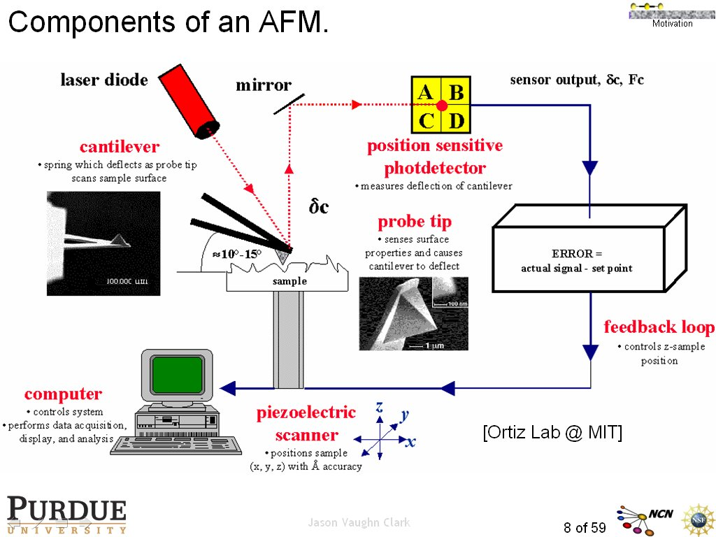 Components of an AFM.