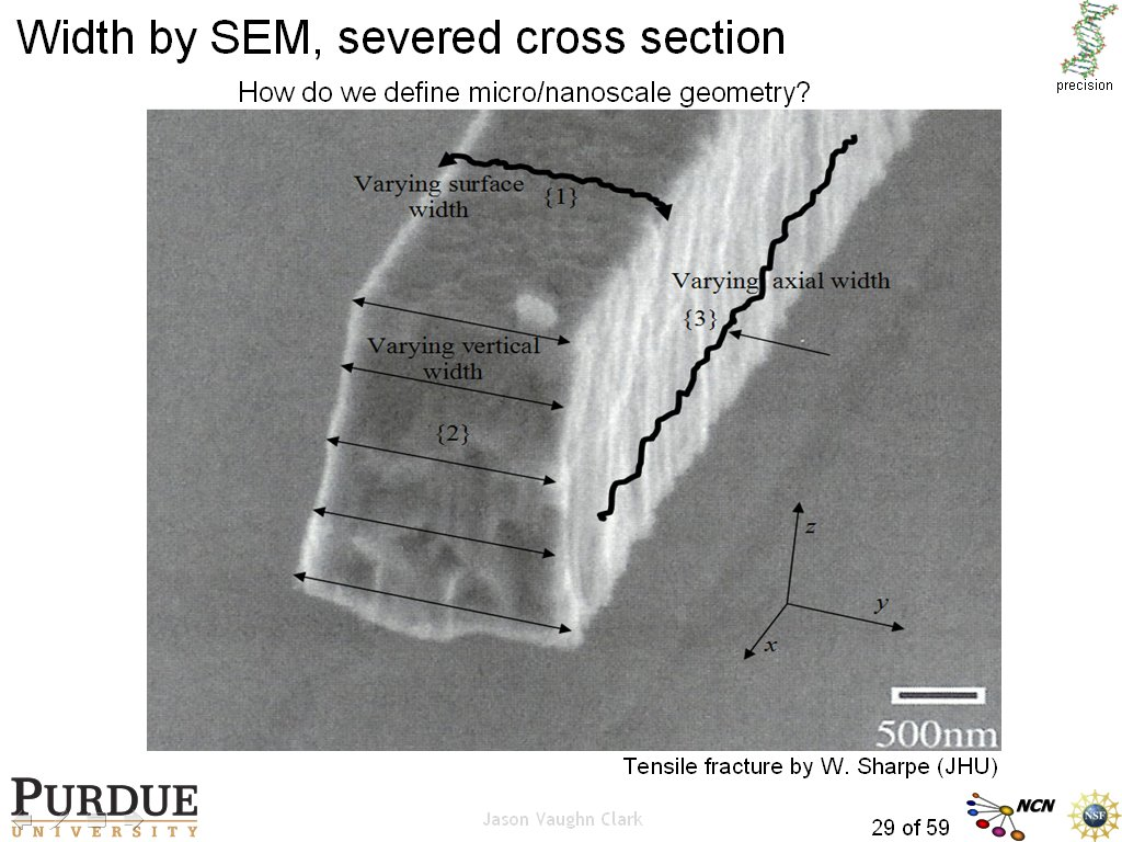 Width by SEM, severed cross section