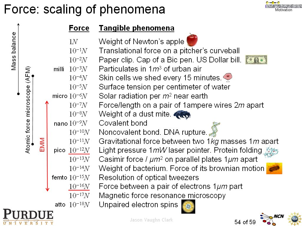 Force: scaling of phenomena