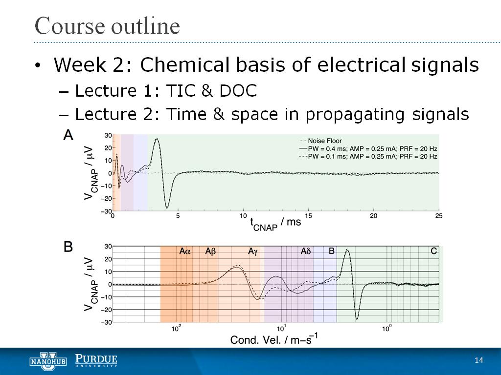 Week 2 Lecture 2: Time & space in propagating signals