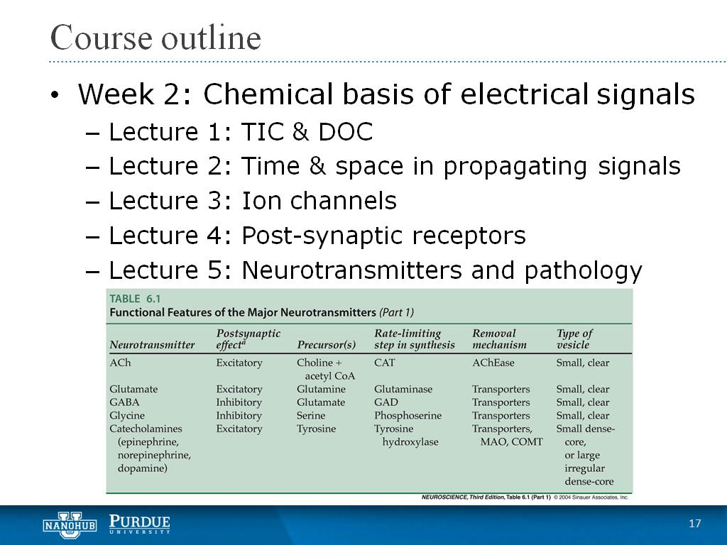 Week 2 Lecture 5: Neurotransmitters and pathology
