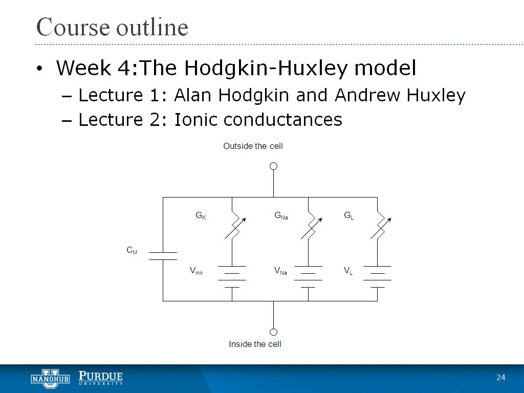 Week 4 Lecture 2: Ionic conductances