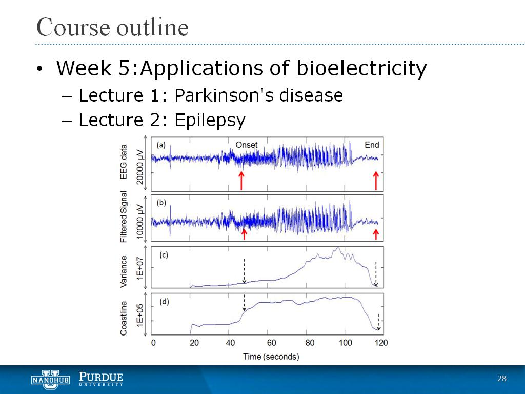 Week 5 Lecture 2: Epilepsy