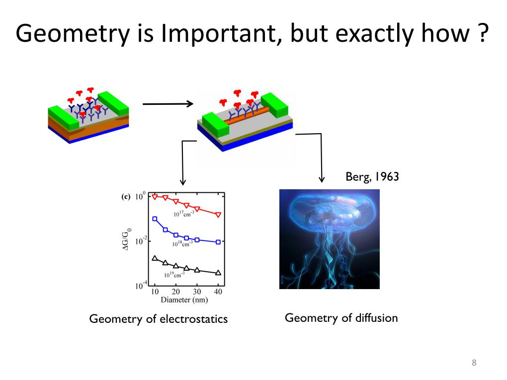 importance geometry essay Can you see the shocking reality of the importance of using geometry in your life without even thinking about it.