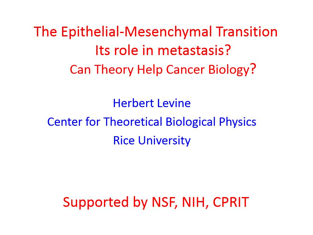 The Epithelial-Mesenchymal Transition Its role in metastasis? Can Theory Help Cancer Biology?
