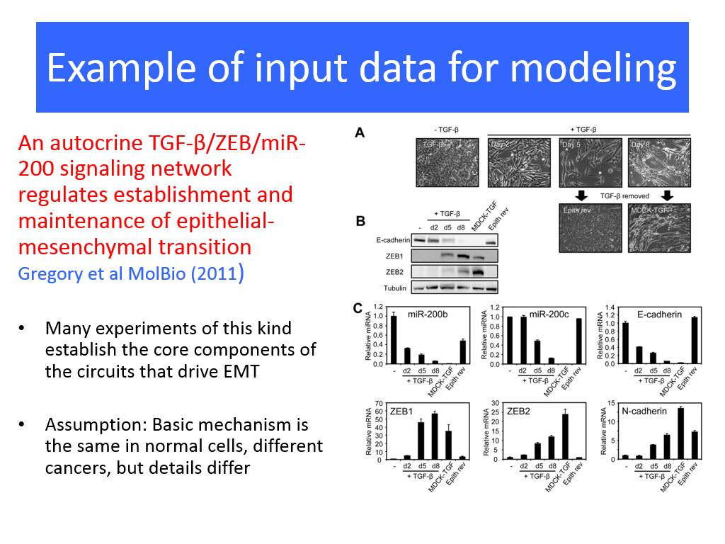 Example of input data for modeling