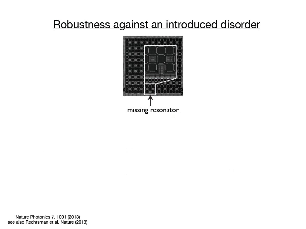 Robustness against an introduced disorder