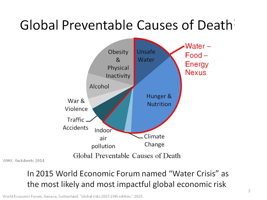 Global Preventable Causes of Death1-3