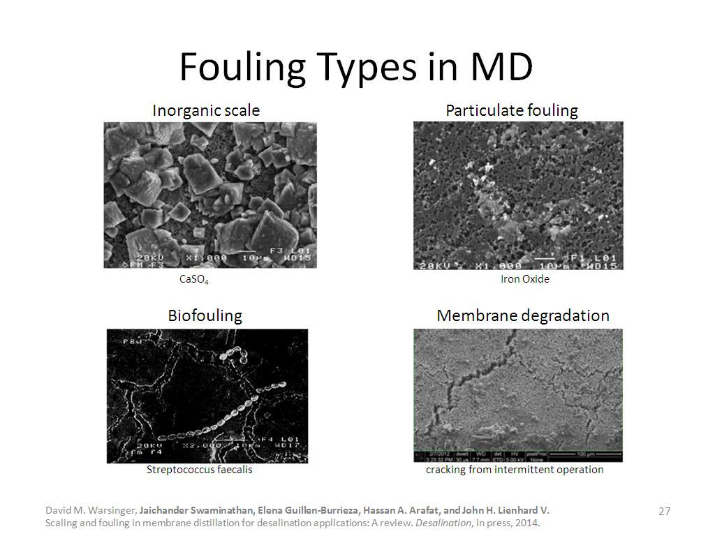 Fouling Types in MD