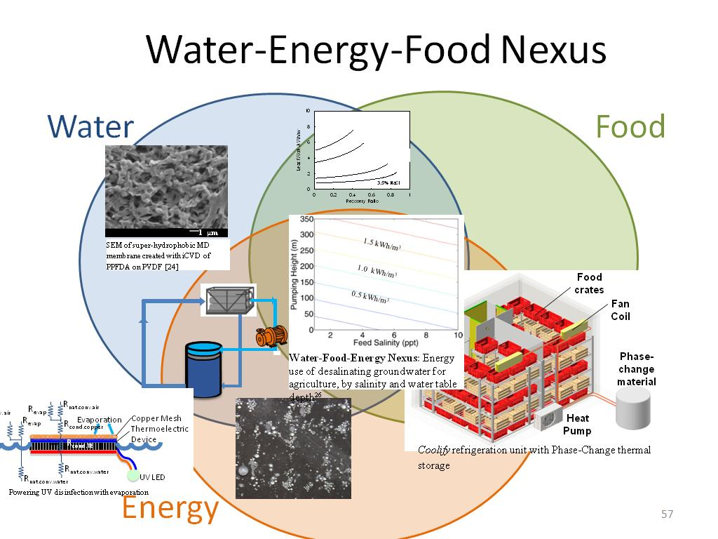 Water-Energy-Food Nexus