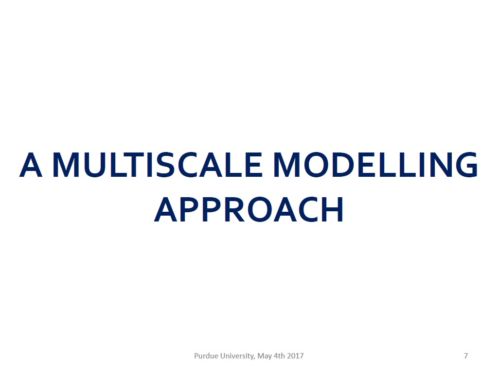 A MULTISCALEMODELLING APPROACH