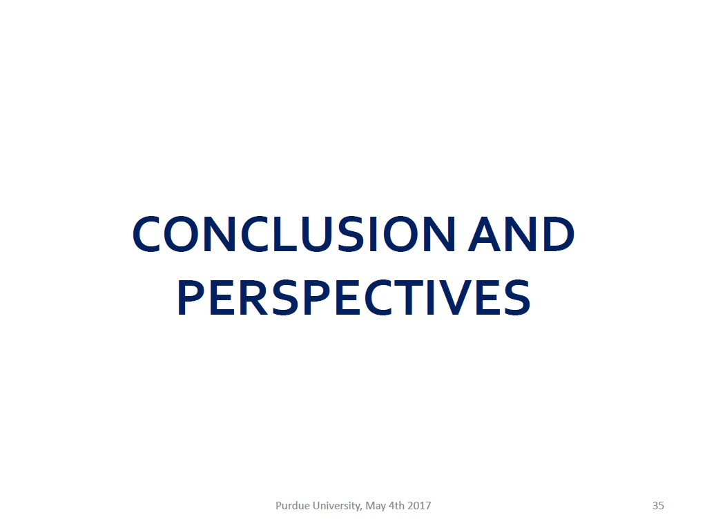 CONCLUSIONAND PERSPECTIVES
