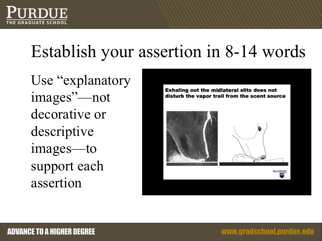 Establish your assertion in 8-14 words