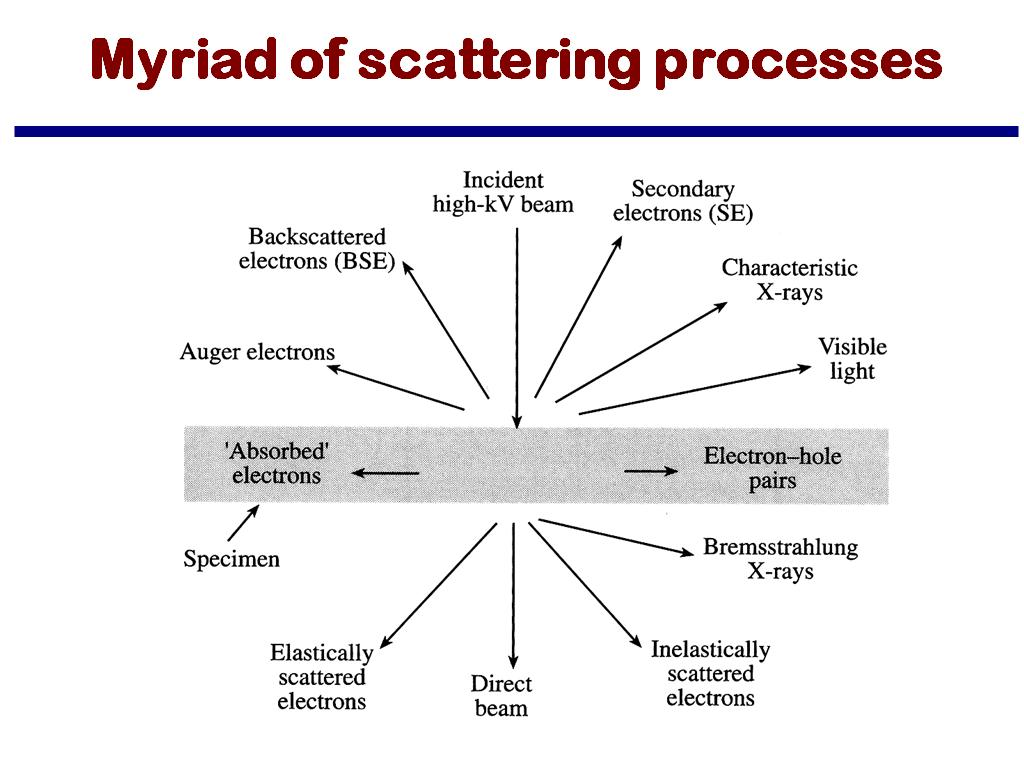 Myriad of scattering processes