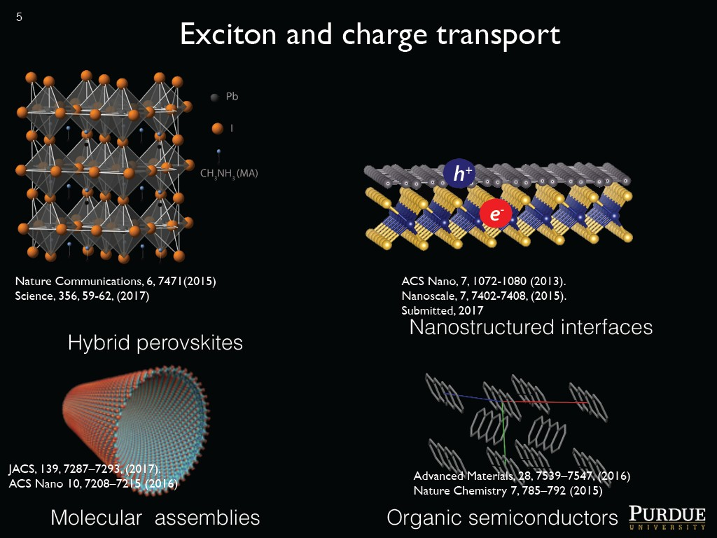 Exciton and charge transport
