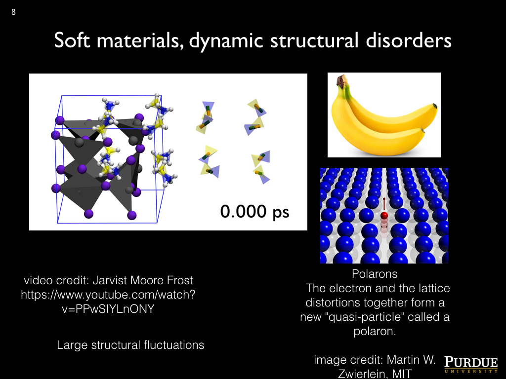 Soft materials, dynamic structural disorders