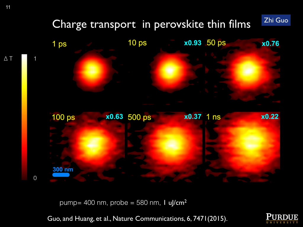 Charge transport in perovskite thin films