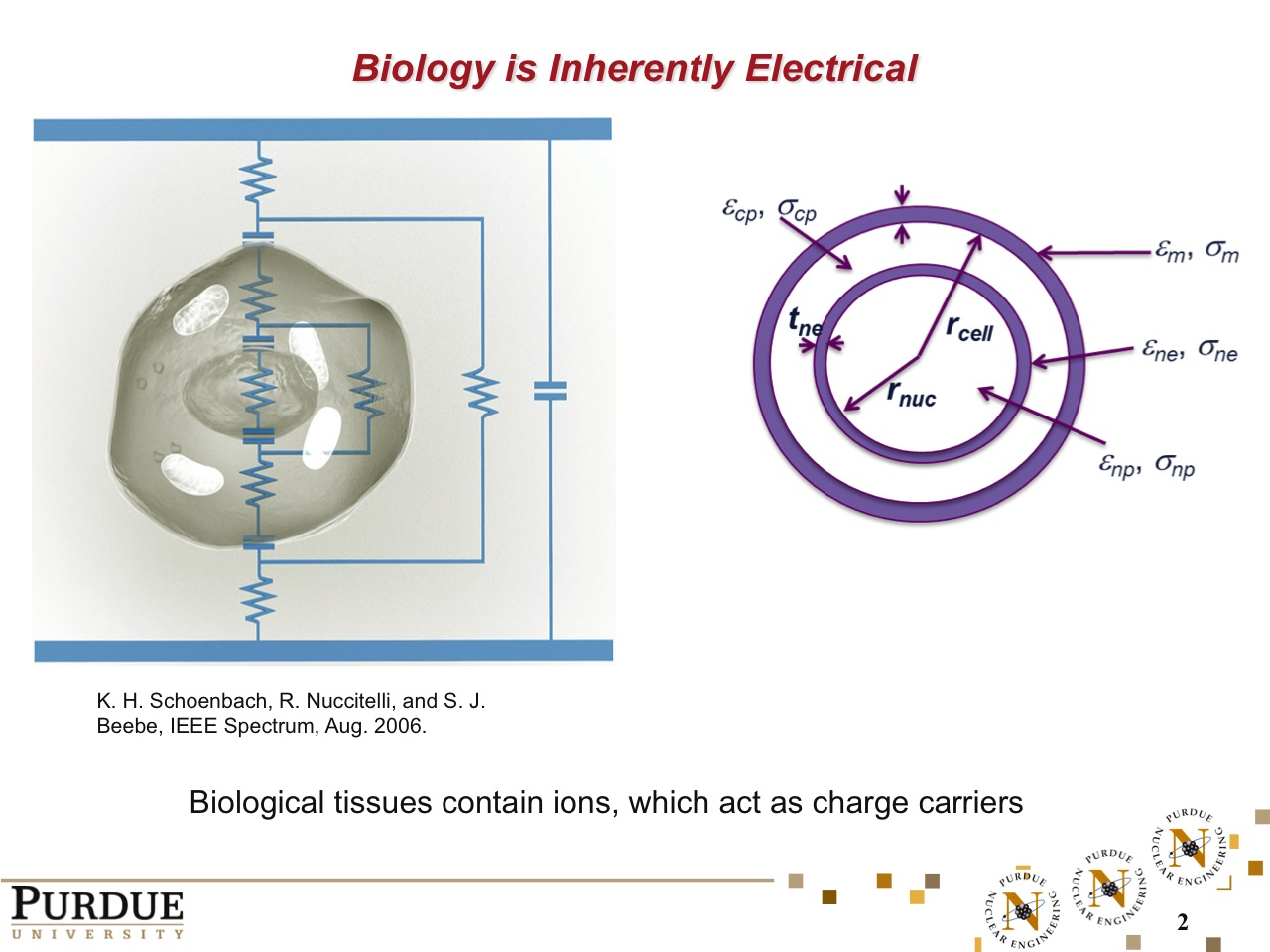 Biology is Inherently Electrical