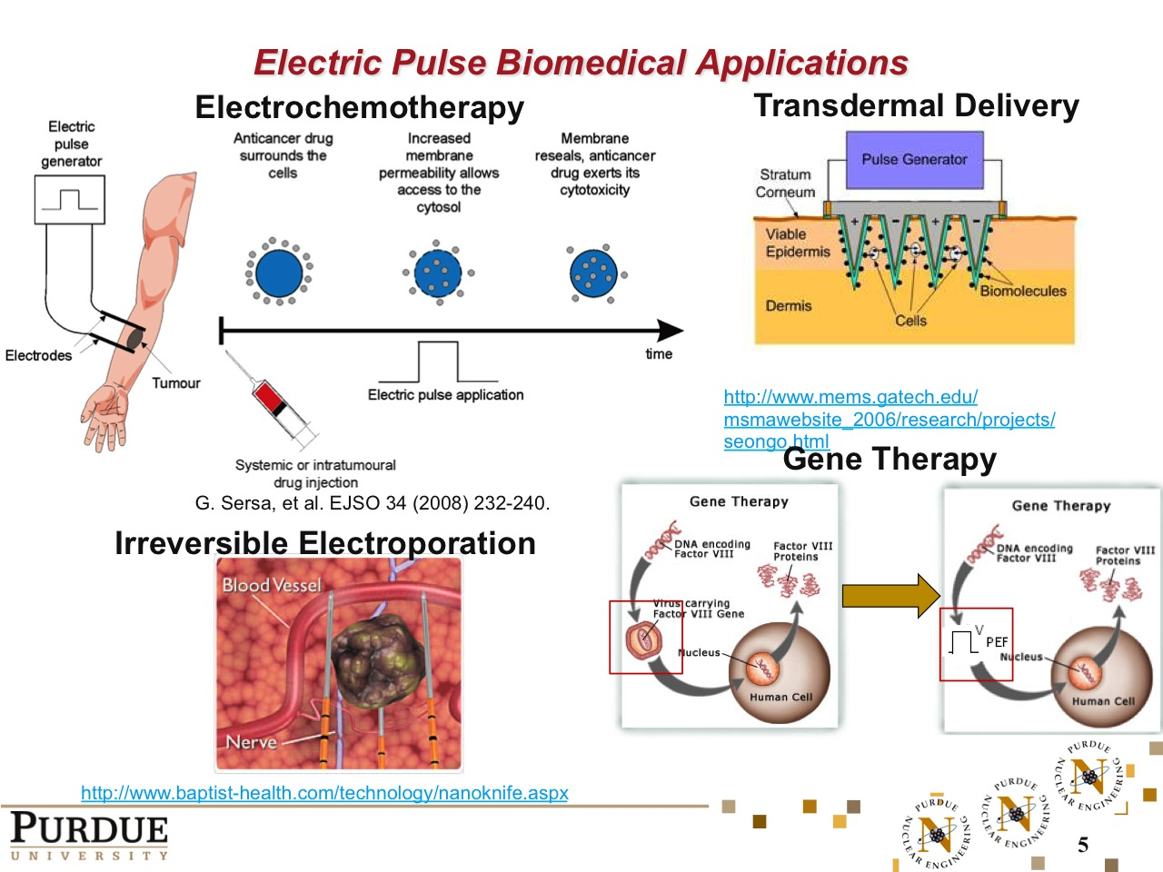 Electric Pulse Biomedical Applications