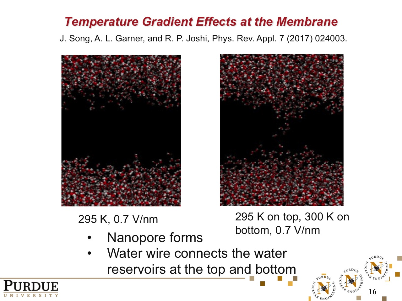 Temperature Gradient Effects at the Membrane