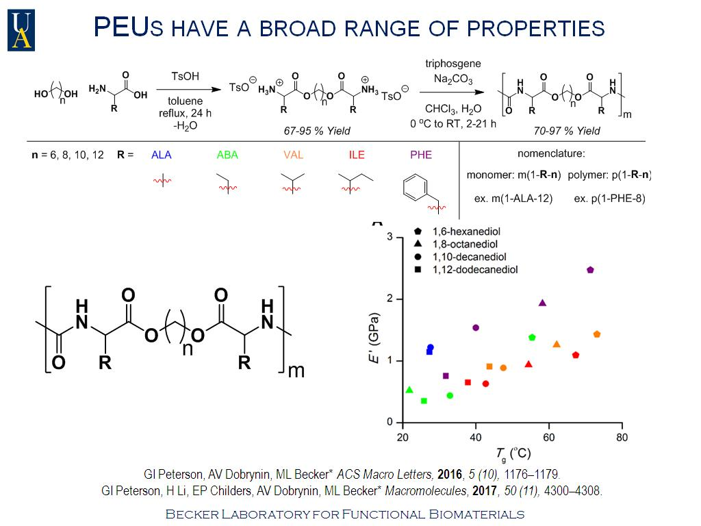 nanoHUB org - Resources: Building Bone with Polymers: How
