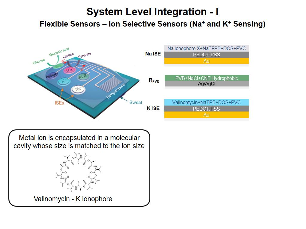 System Level Integration - I