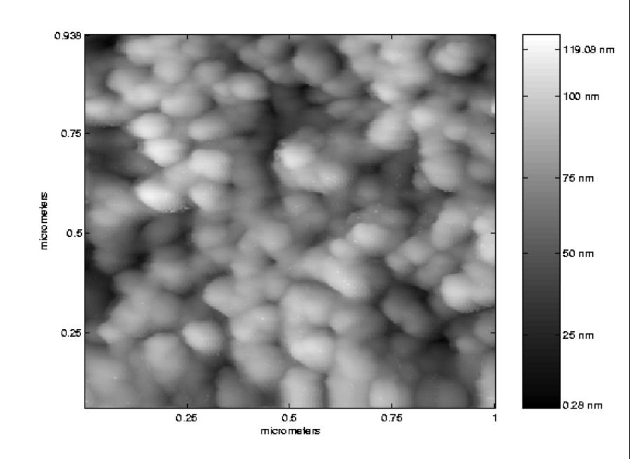 AFM image of rough surface