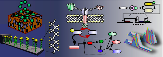 Image:functionalization.jpg